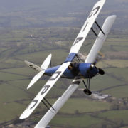tiger moth in a steep bank