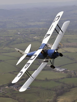 tiger moth flying for special offer promotion