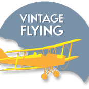 Vintage Flying logo with a tiger moth